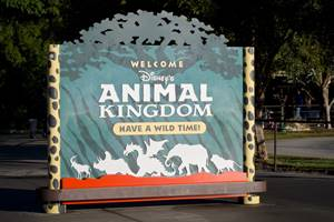 Disney Animal Kingdom Facts