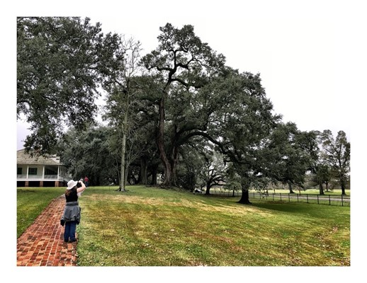 Magnolia Mound Plantation House, Baton Rouge LA